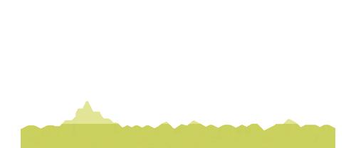 PSM - Logo White